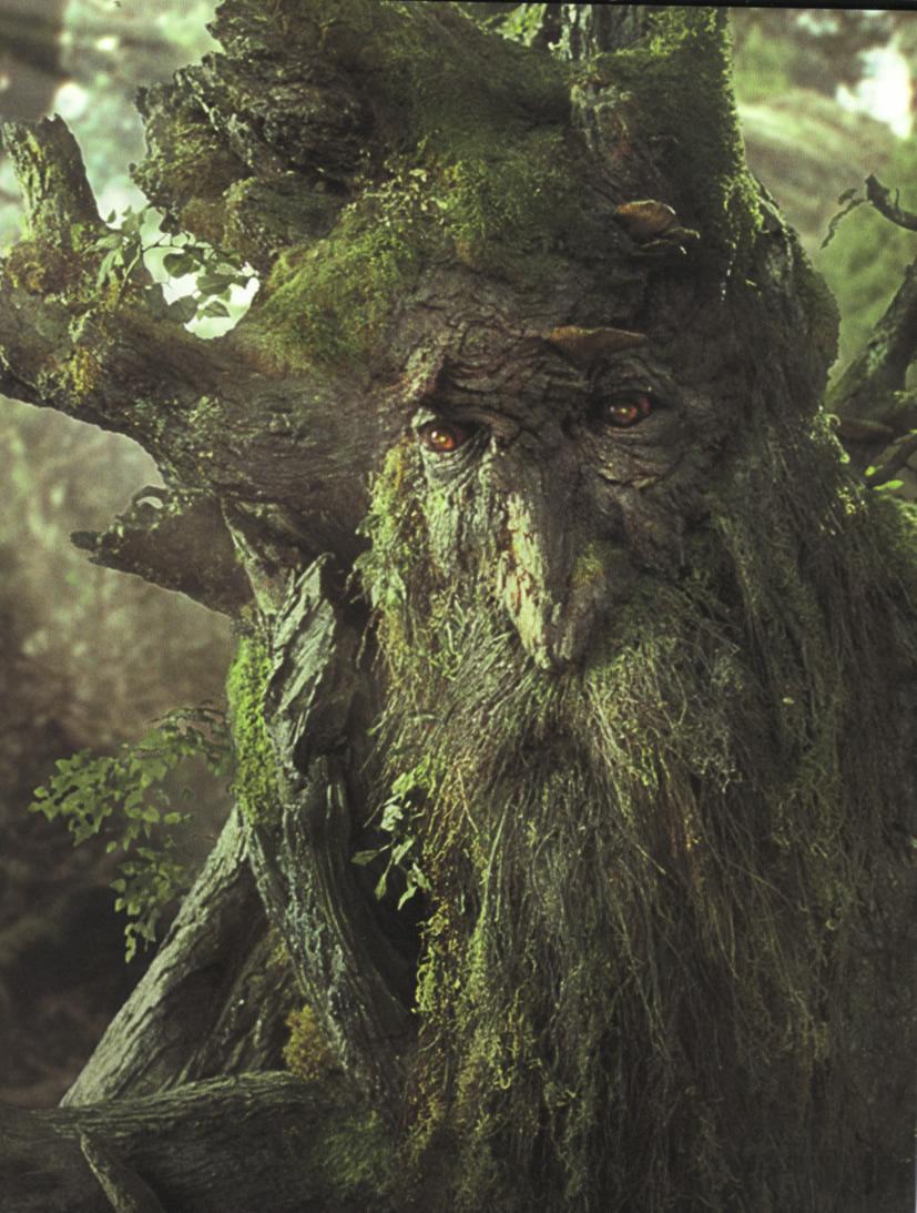 treebeard_6_21_06.jpg