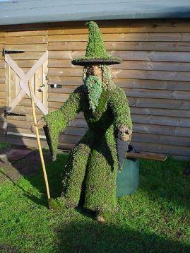 Wizard Plant